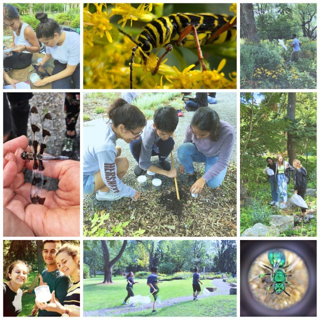 Biology Liv Camp thumbnail_IMG_3236