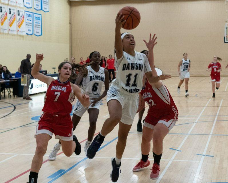 Basketball photo3