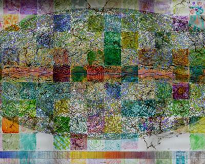 transluminal-mural