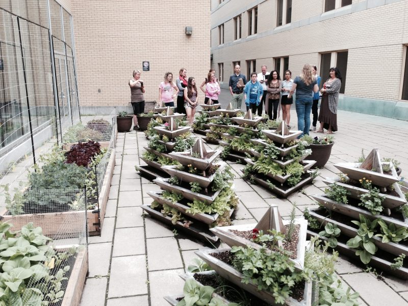 Dawson students and staff at a rooftop garden workshop
