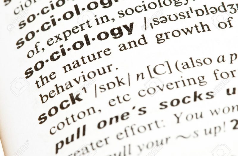 the word sociology in a dictionary