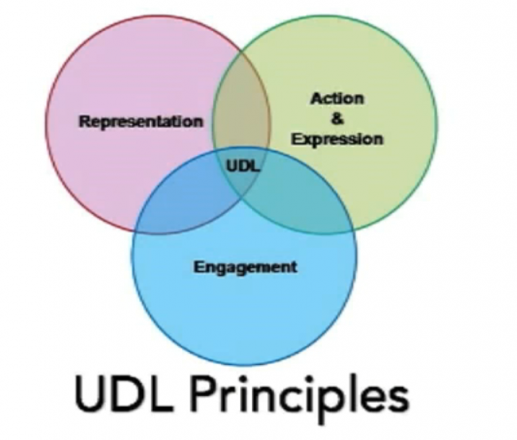 chantale UDL representation