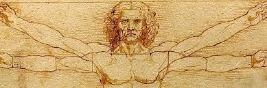 L'homme de L. Da Vinci